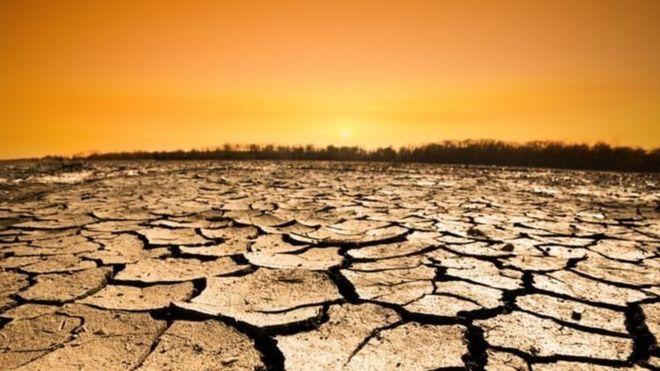 Cambio climático: por qué los próximos 18 meses son cruciales para el planeta y para todos nosotros